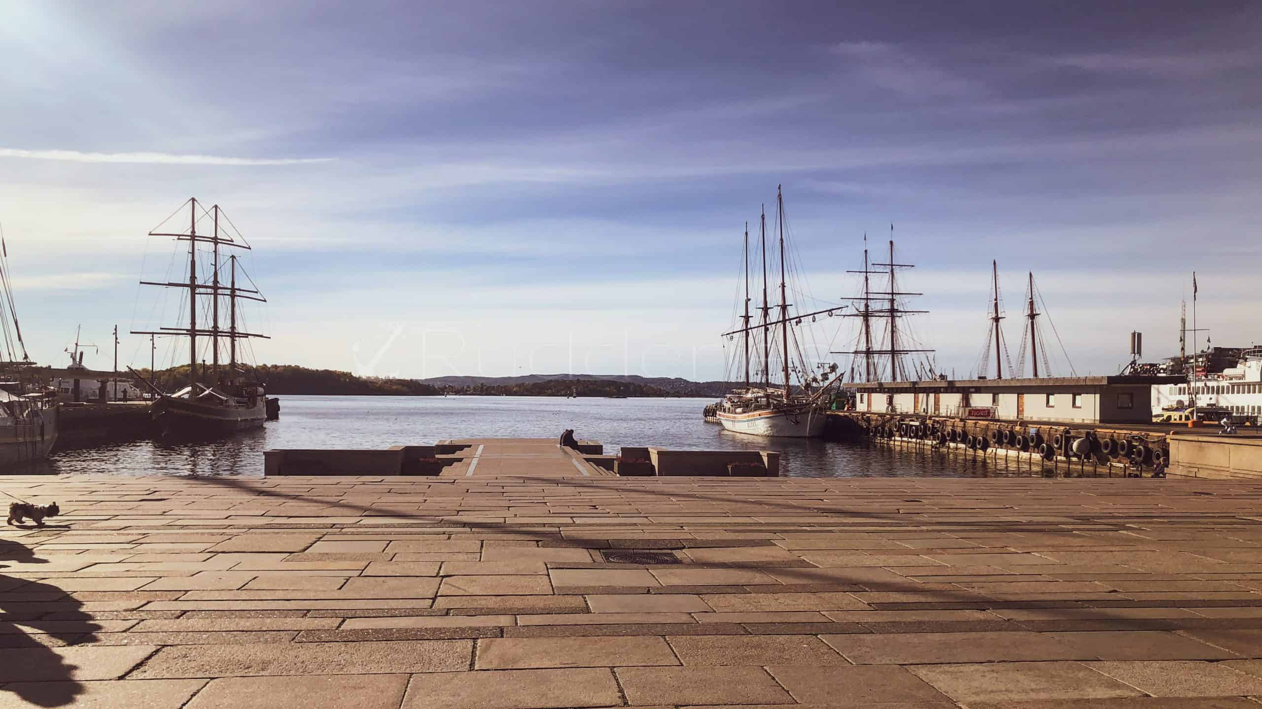 what to see in oslo - oslo harbour